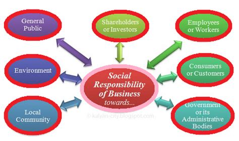 What is social responsibility essay